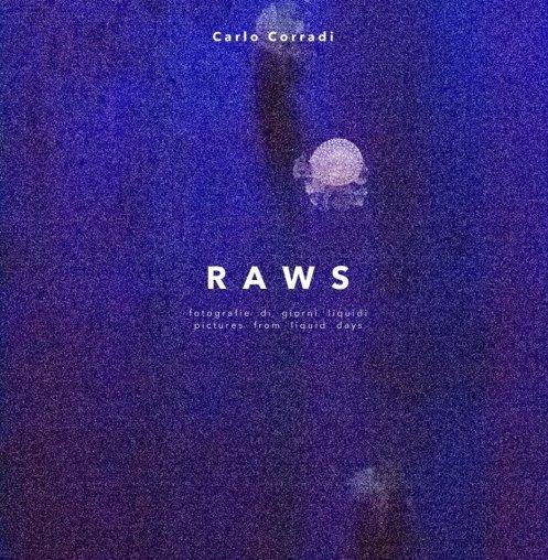 """C. Corradi, copertina di """"RAWS"""""""