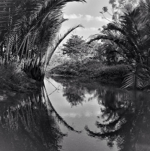 "David Guttenfelder, ""A narrow canal in the Mekong delta near Can Tho, Vietnam"", 2014"