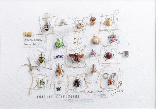 """M. Hohlweg, """"Imagine Coleoptera"""", 2016"""